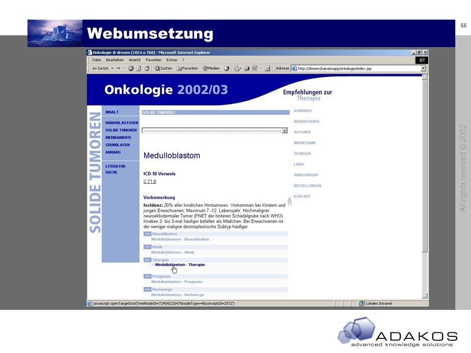 Webumsetzung All rights reseved © 2002