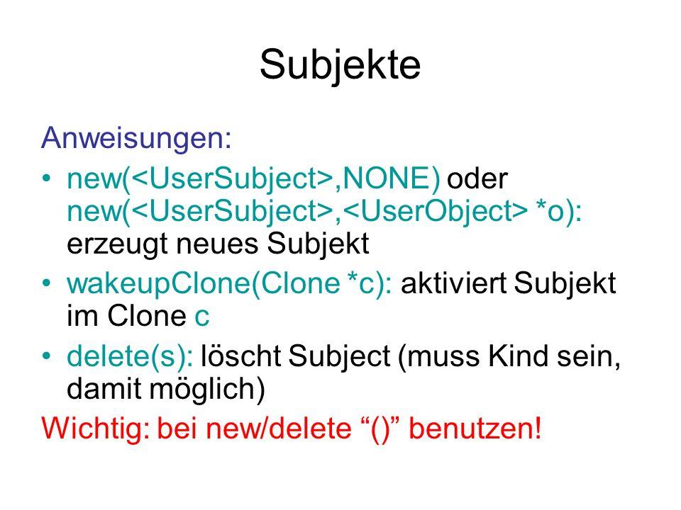 Subjekte Anweisungen: