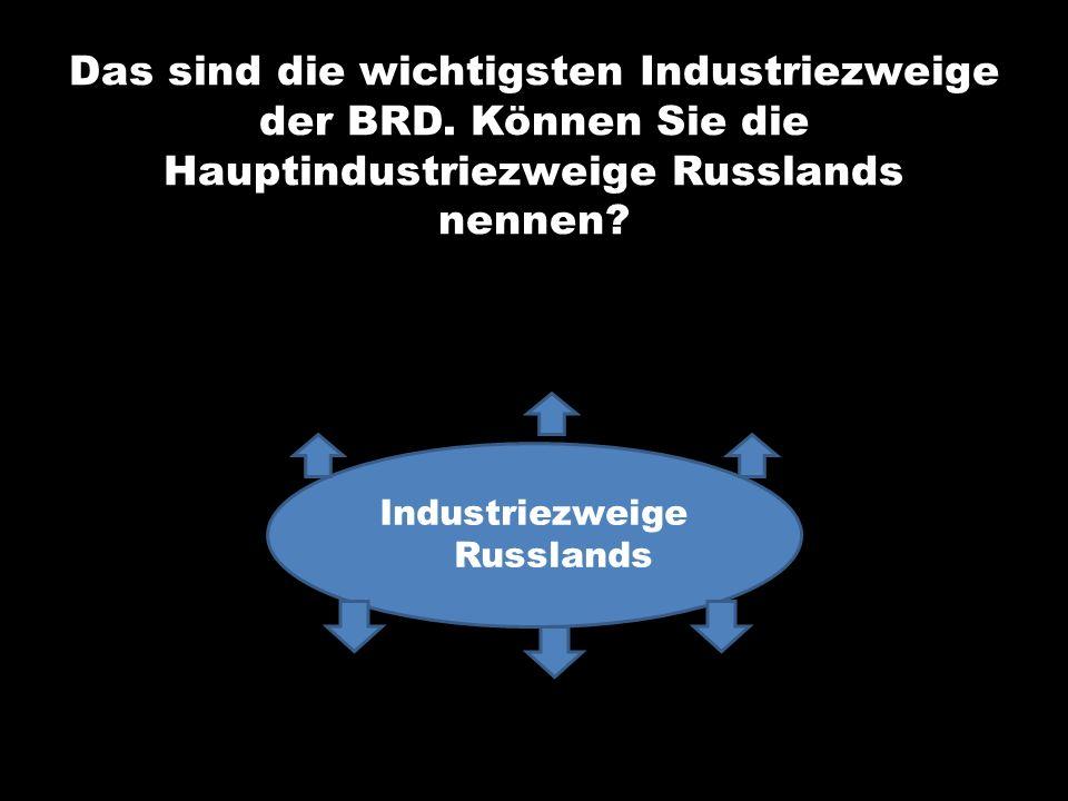 Industriezweige Russlands