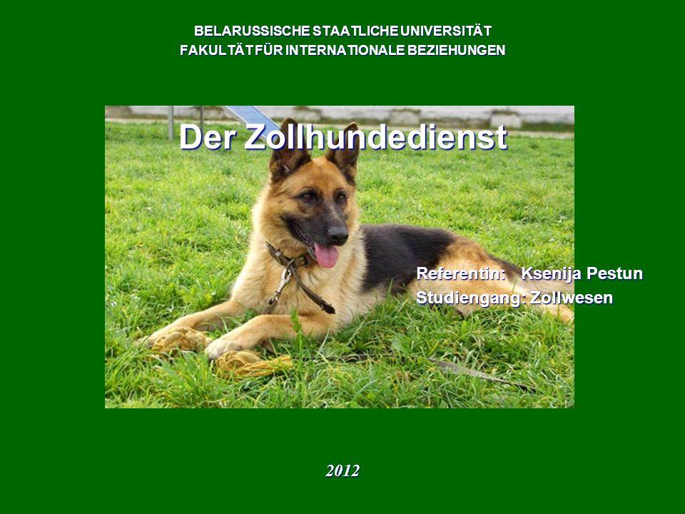 Der Zollhundedienst Referentin: Ksenija Pestun Studiengang: Zollwesen