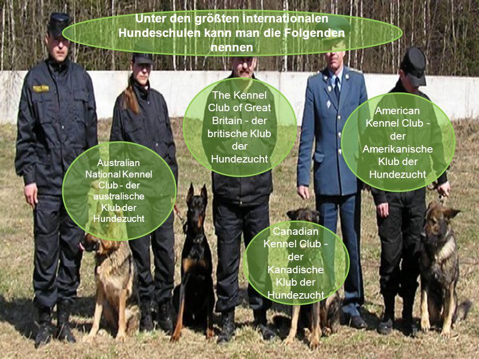 Unter den größten internationalen Hundeschulen kann man die Folgenden nennen