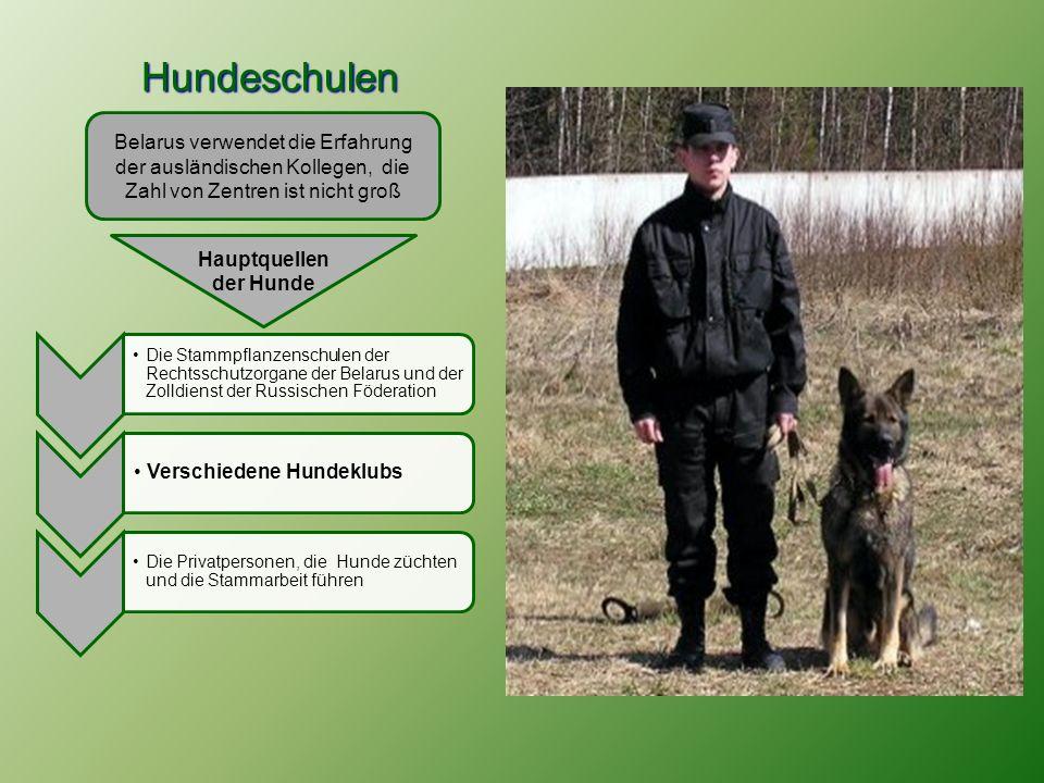 Hauptquellen der Hunde