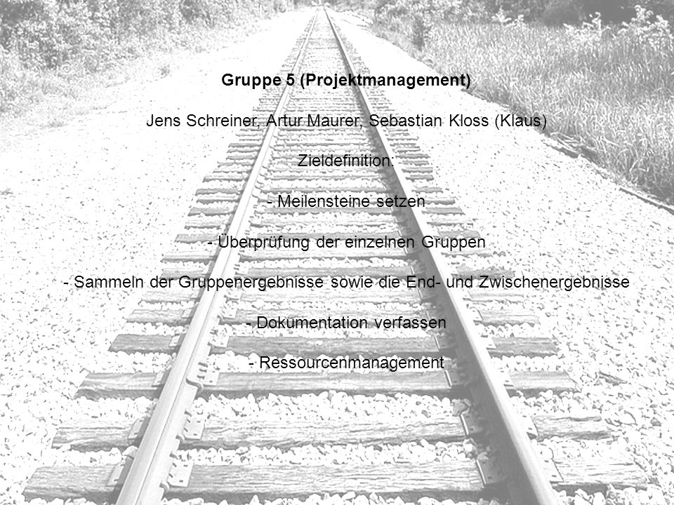Gruppe 5 (Projektmanagement)