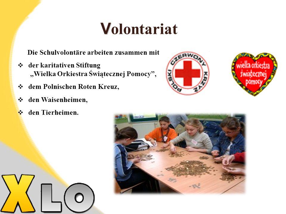 Volontariat Die Schulvolontäre arbeiten zusammen mit