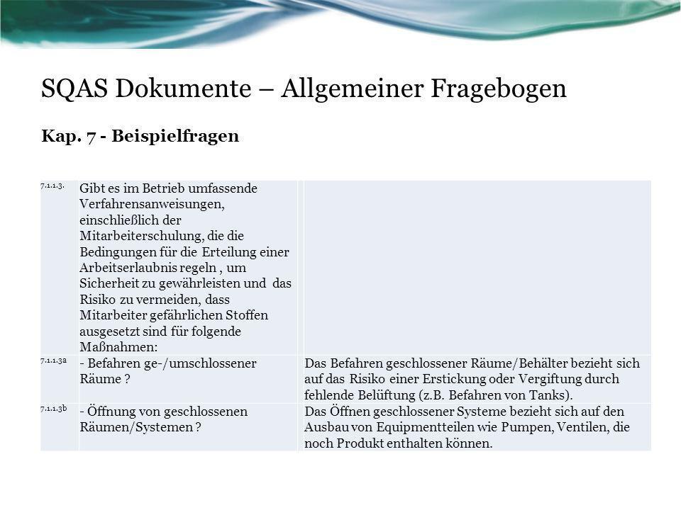 SQAS Dokumente – Allgemeiner Fragebogen