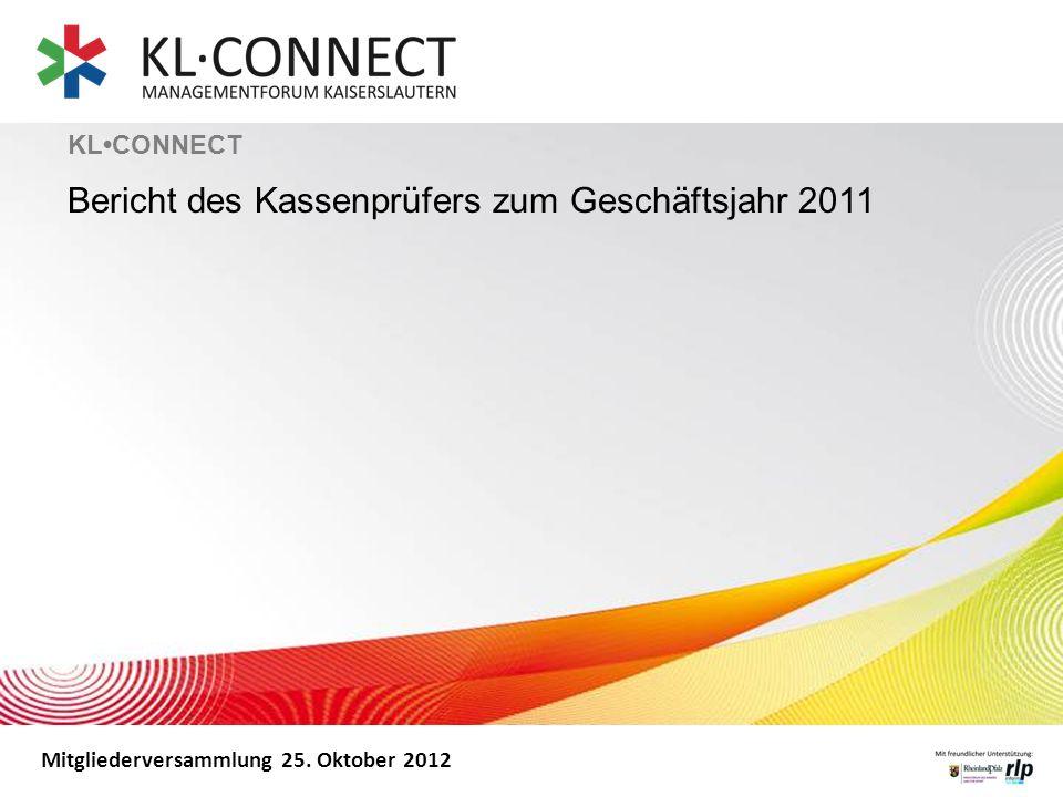 Bericht des Kassenprüfers zum Geschäftsjahr 2011