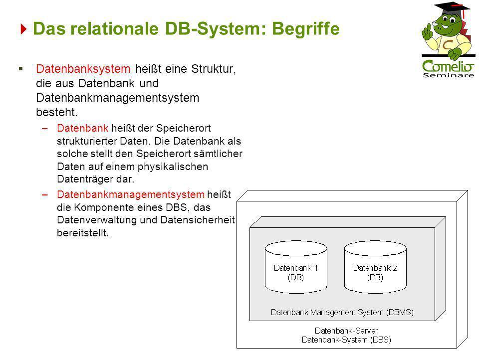 Das relationale DB-System: Begriffe