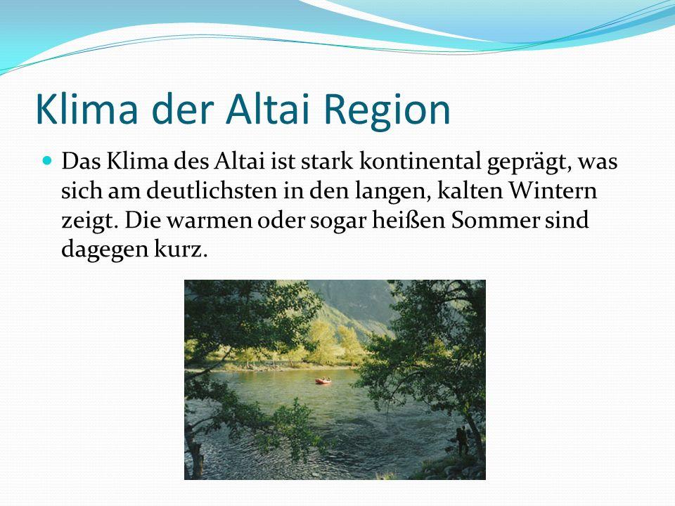 Klima der Altai Region