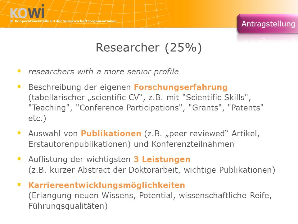 Researcher (25%) researchers with a more senior profile