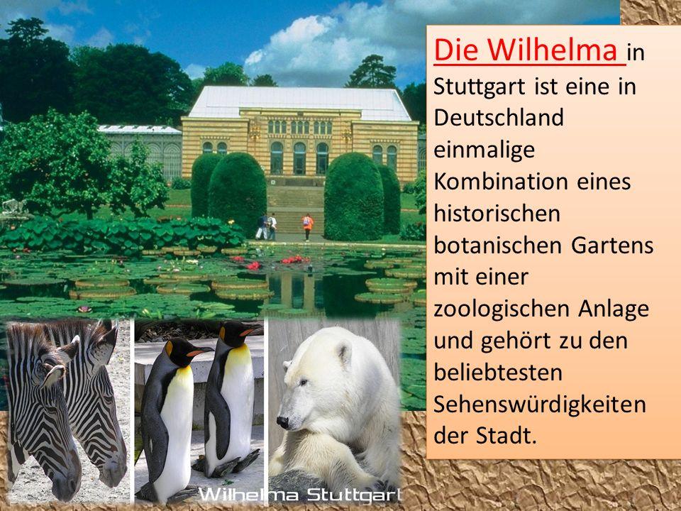 Die Wilhelma in Stuttgart ist eine in Deutschland einmalige Kombination eines historischen botanischen Gartens mit einer zoologischen Anlage und gehört zu den beliebtesten Sehenswürdigkeiten der Stadt.