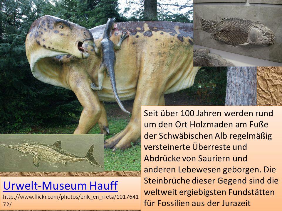 Seit über 100 Jahren werden rund um den Ort Holzmaden am Fuße der Schwäbischen Alb regelmäßig versteinerte Überreste und Abdrücke von Sauriern und anderen Lebewesen geborgen. Die Steinbrüche dieser Gegend sind die weltweit ergiebigsten Fundstätten für Fossilien aus der Jurazeit