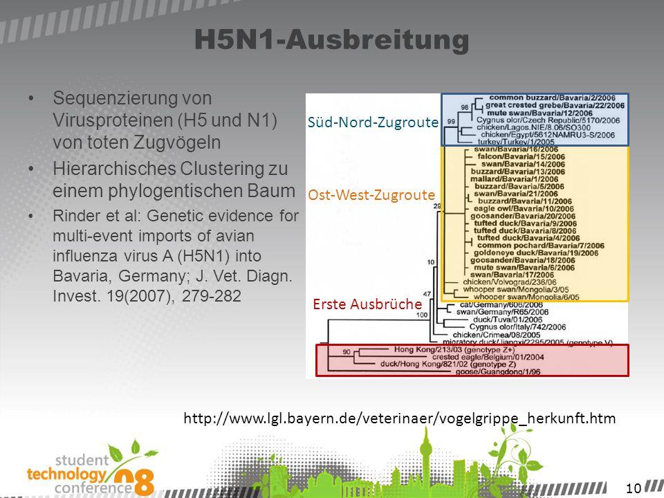 H5N1-Ausbreitung Sequenzierung von Virusproteinen (H5 und N1) von toten Zugvögeln. Hierarchisches Clustering zu einem phylogentischen Baum.