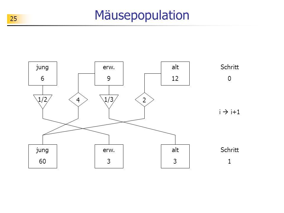 Mäusepopulation jung 6 erw. 9 alt 12 Schritt 1/2 4 1/3 2 i  i+1 jung