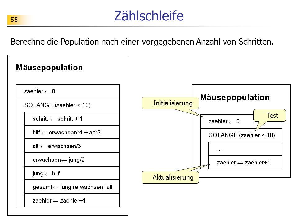 Zählschleife Berechne die Population nach einer vorgegebenen Anzahl von Schritten. Initialisierung.