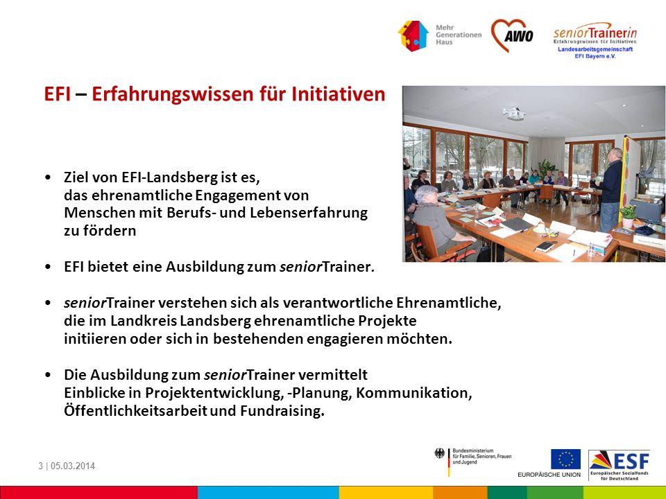 EFI – Erfahrungswissen für Initiativen