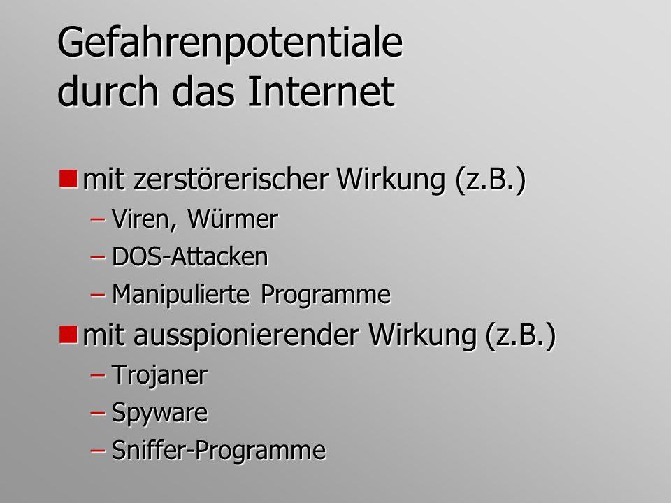 Gefahrenpotentiale durch das Internet