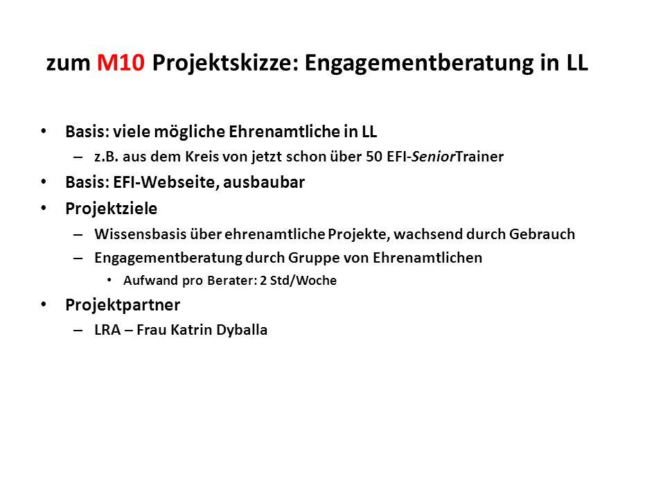 zum M10 Projektskizze: Engagementberatung in LL