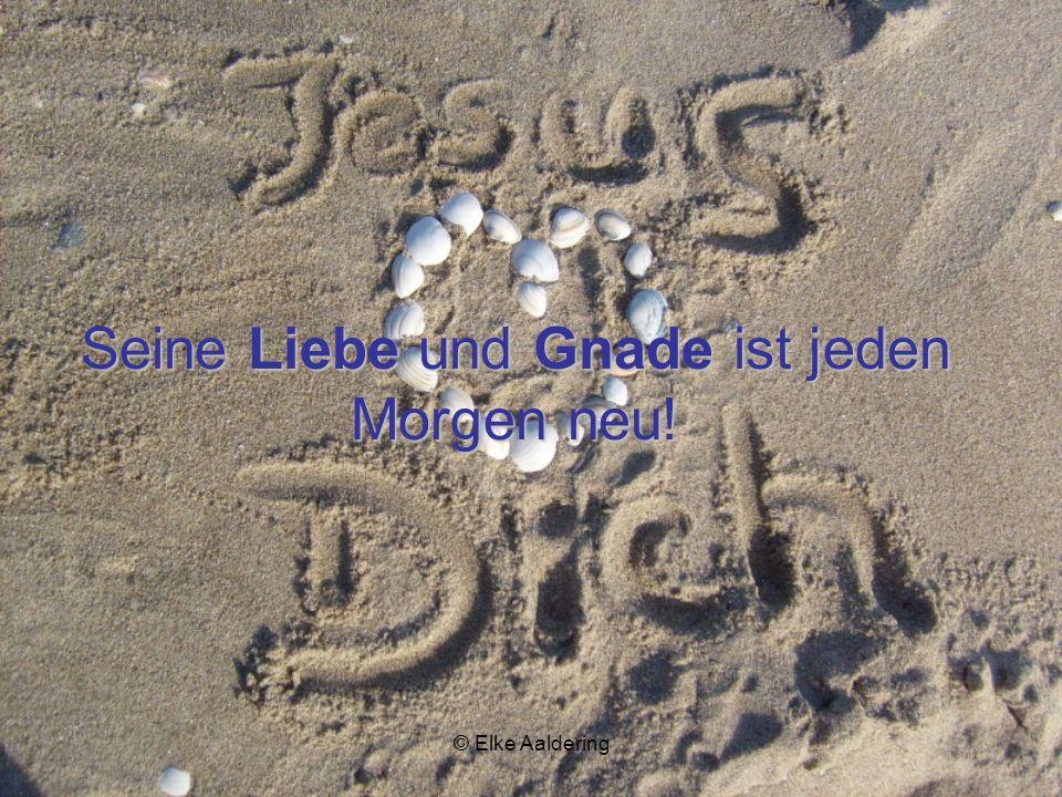 Seine Liebe und Gnade ist jeden Morgen neu!