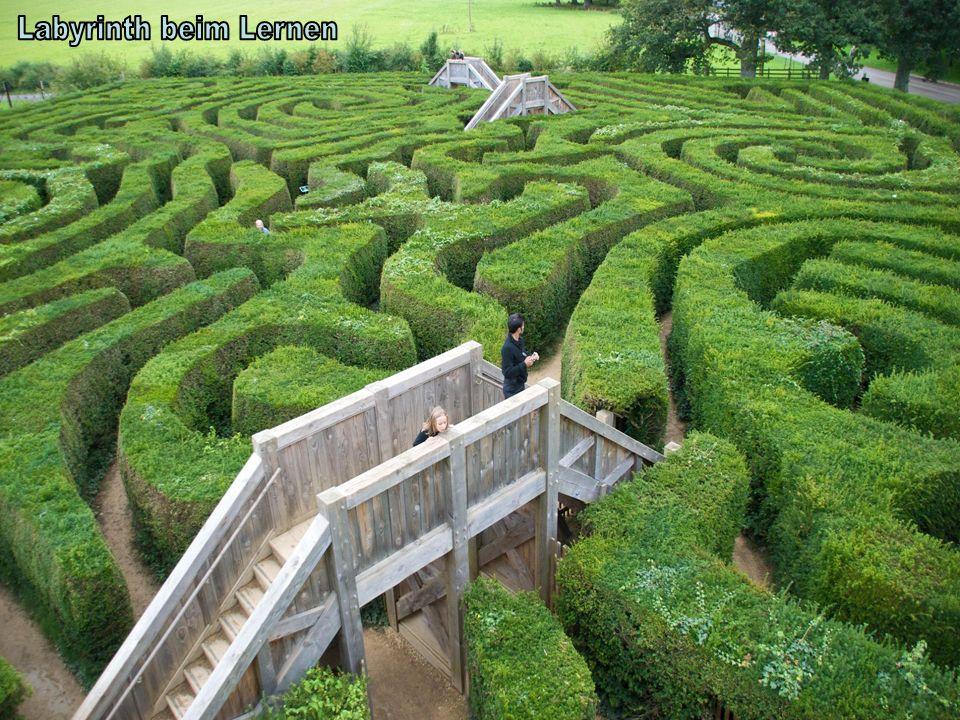 Labyrinth beim Lernen