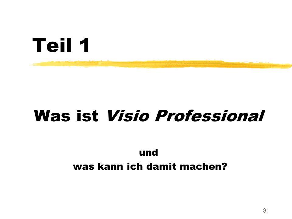 Was ist Visio Professional und was kann ich damit machen