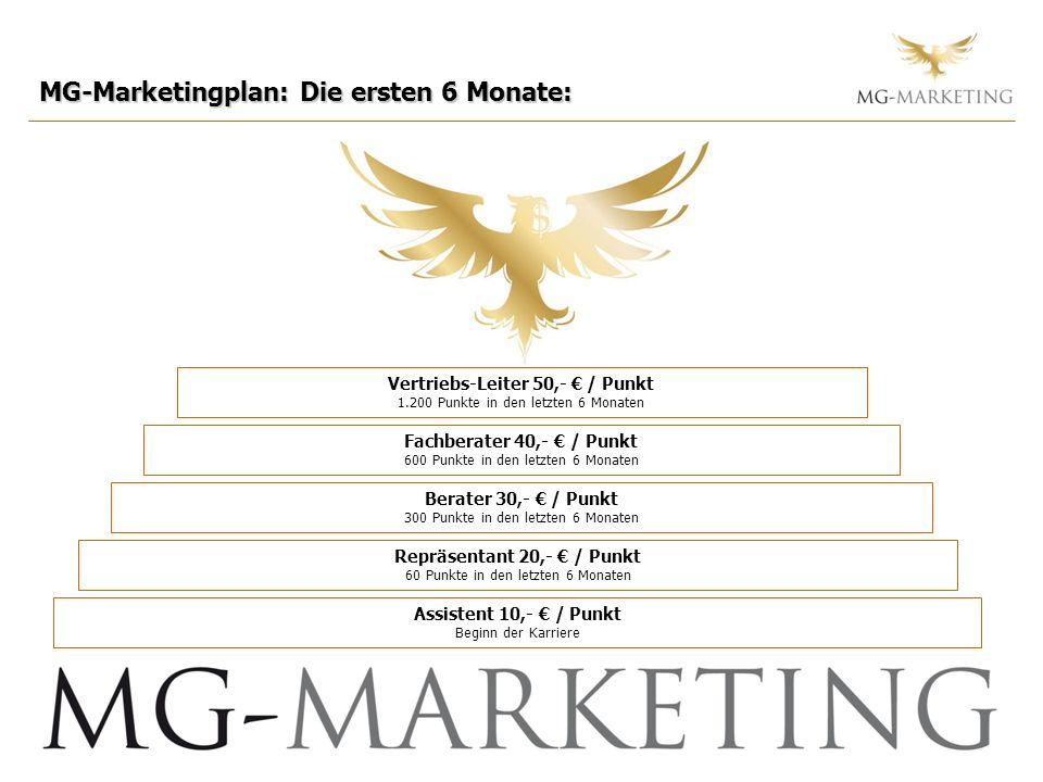MG-Marketingplan: Die ersten 6 Monate: