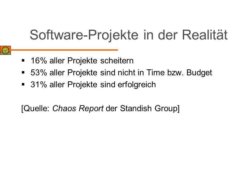 Software-Projekte in der Realität