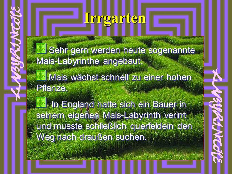 Irrgarten Sehr gern werden heute sogenannte Mais-Labyrinthe angebaut.
