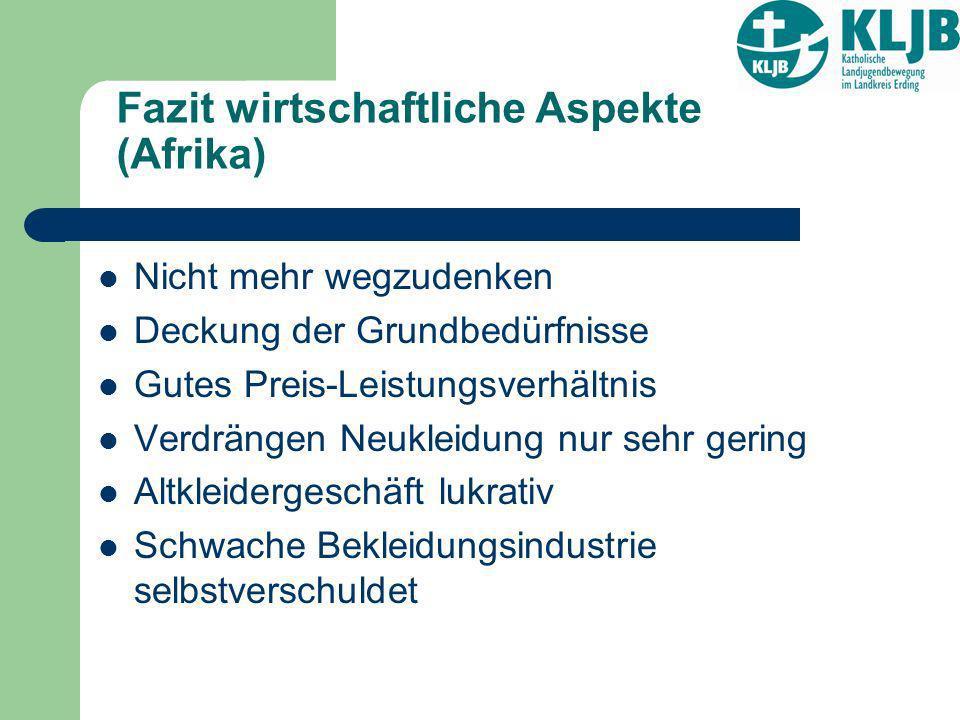 Fazit wirtschaftliche Aspekte (Afrika)
