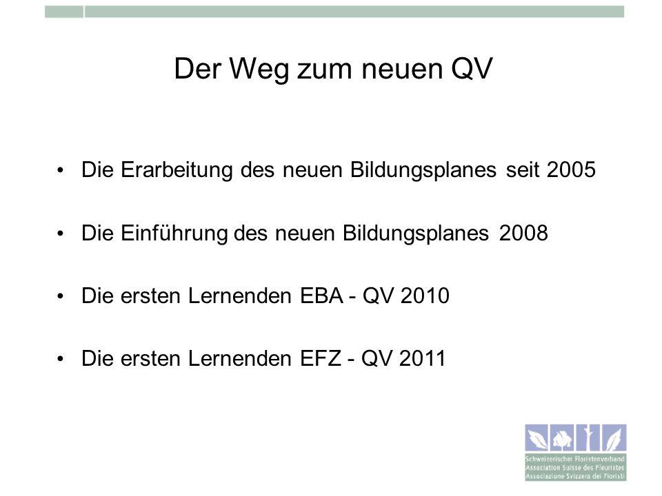 Der Weg zum neuen QVDie Erarbeitung des neuen Bildungsplanes seit 2005. Die Einführung des neuen Bildungsplanes 2008.