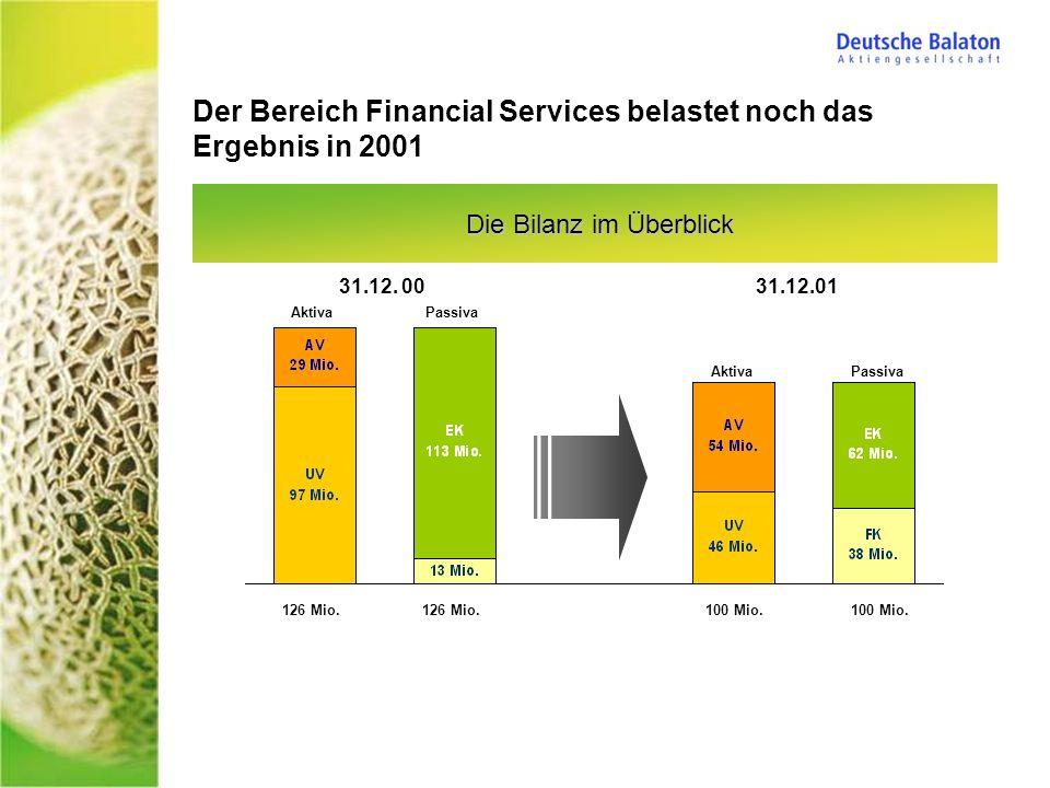 Der Bereich Financial Services belastet noch das Ergebnis in 2001