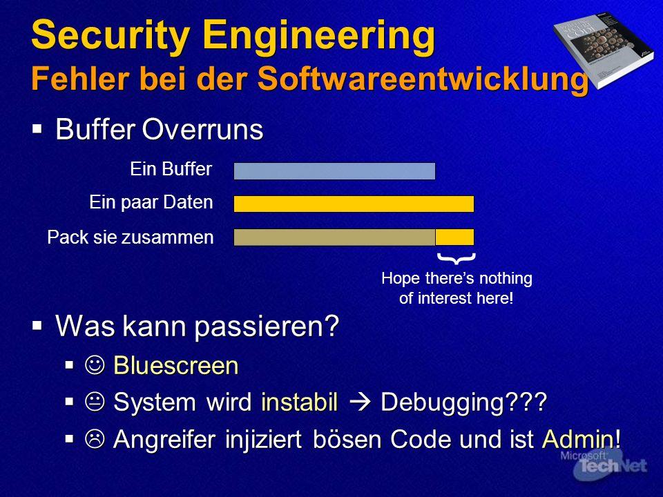 Security Engineering Fehler bei der Softwareentwicklung