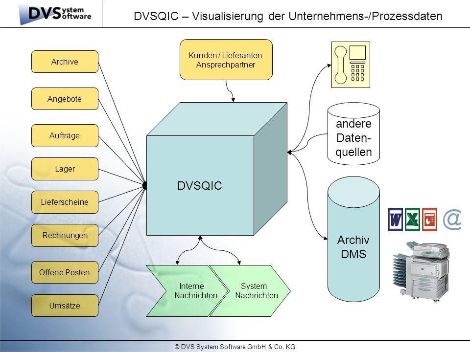 DVSQIC – Visualisierung der Unternehmens-/Prozessdaten
