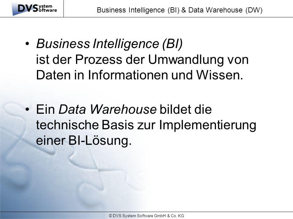 Business Intelligence (BI) & Data Warehouse (DW)