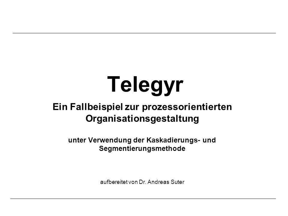 Telegyr Ein Fallbeispiel zur prozessorientierten Organisationsgestaltung. unter Verwendung der Kaskadierungs- und Segmentierungsmethode.