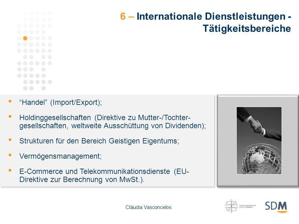 6 – Internationale Dienstleistungen - Tätigkeitsbereiche