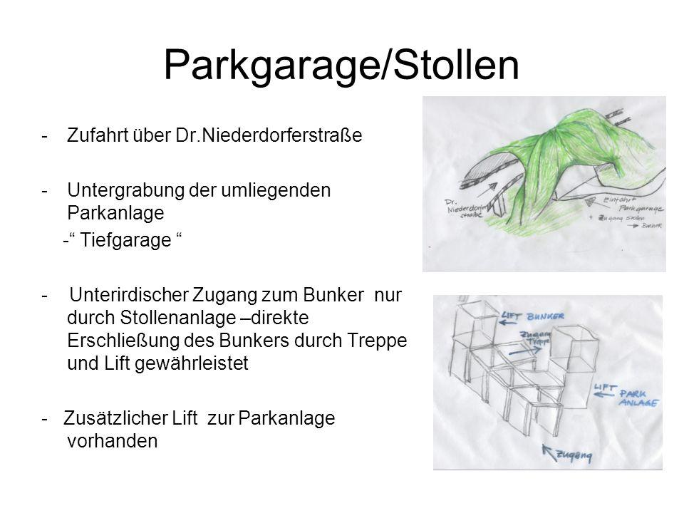 Parkgarage/Stollen Zufahrt über Dr.Niederdorferstraße