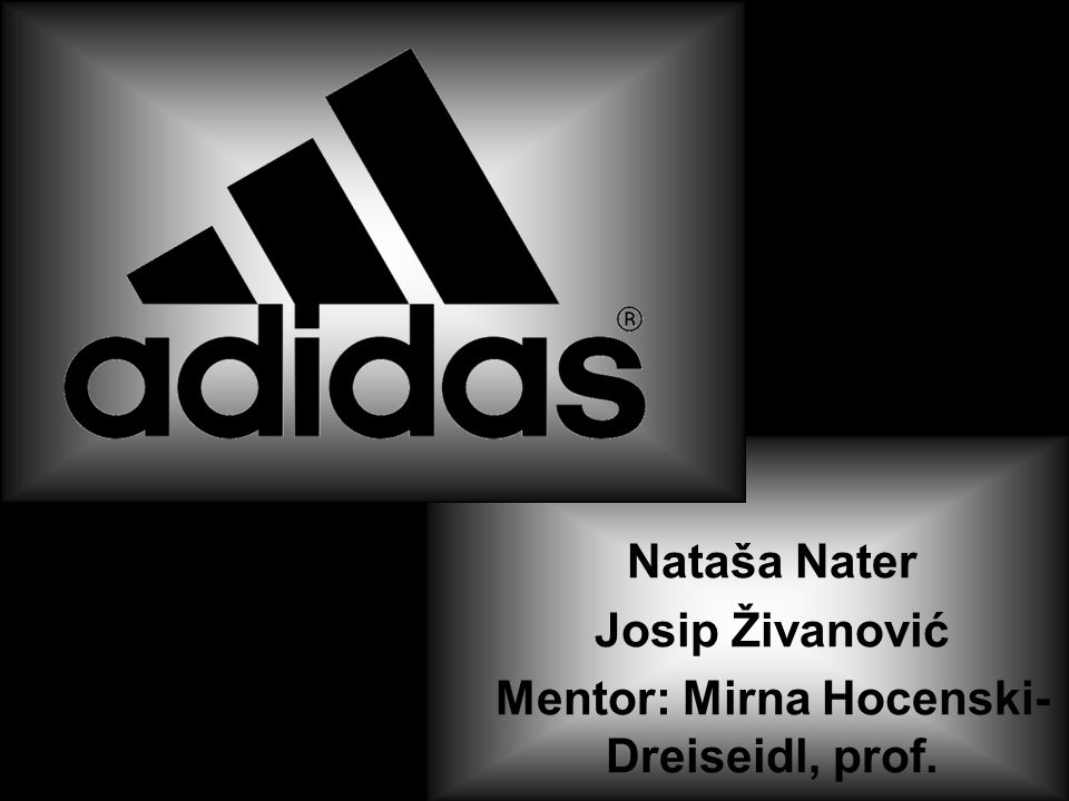 Nataša Nater Josip Živanović Mentor: Mirna Hocenski-Dreiseidl, prof.