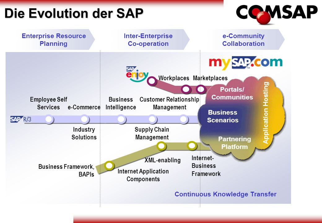 Die Evolution der SAP Enterprise Resource Planning Inter-Enterprise