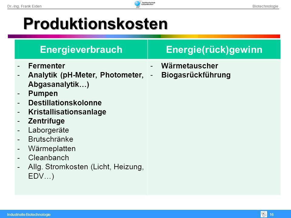 Produktionskosten Energieverbrauch Energie(rück)gewinn Fermenter