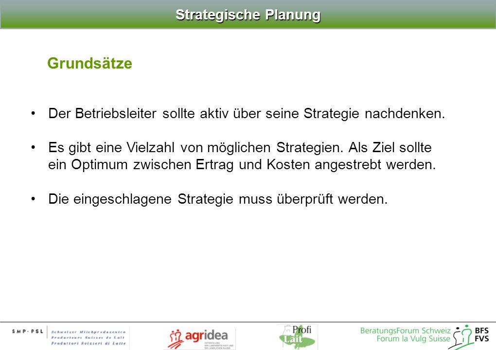Grundsätze Strategische Planung