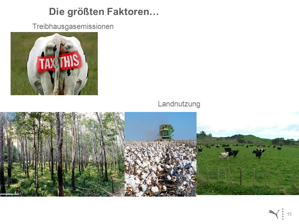 Die größten Faktoren… Treibhausgasemissionen Landnutzung