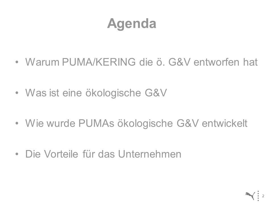 Agenda Warum PUMA/KERING die ö. G&V entworfen hat