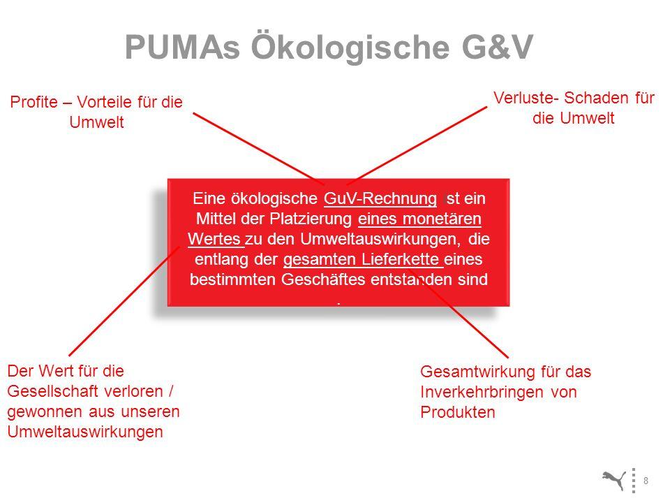 PUMAs Ökologische G&V Verluste- Schaden für die Umwelt