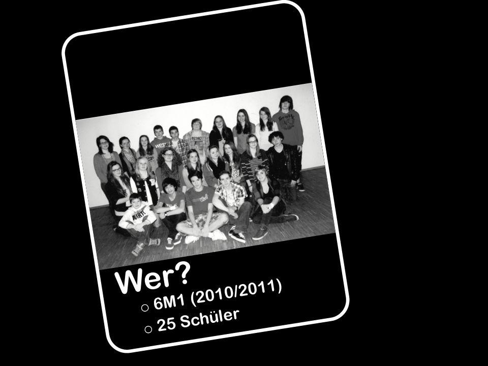 Wer 6M1 (2010/2011) 25 Schüler
