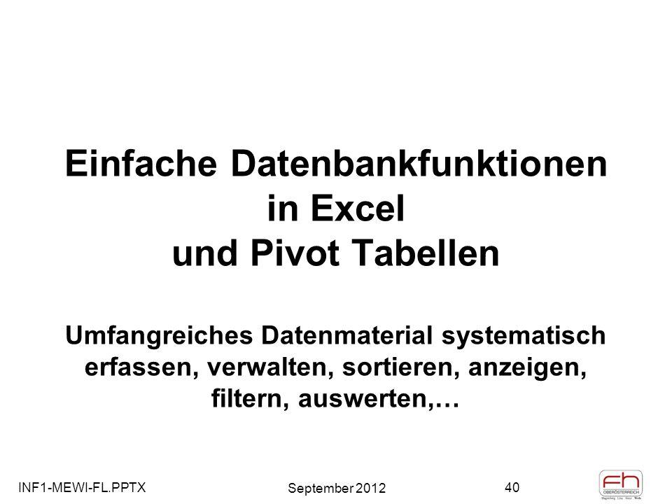 Einfache Datenbankfunktionen in Excel und Pivot Tabellen Umfangreiches Datenmaterial systematisch erfassen, verwalten, sortieren, anzeigen, filtern, auswerten,…