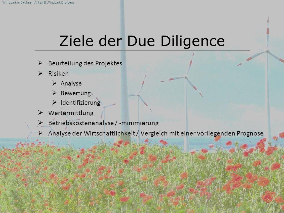 Ziele der Due Diligence