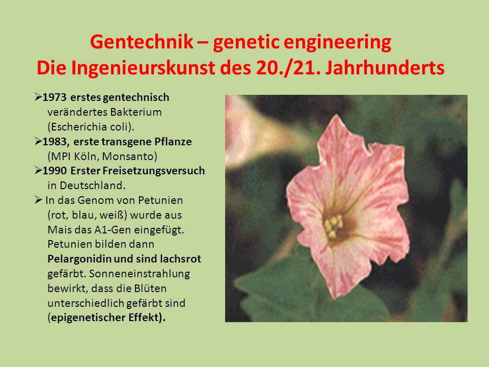 Gentechnik – genetic engineering