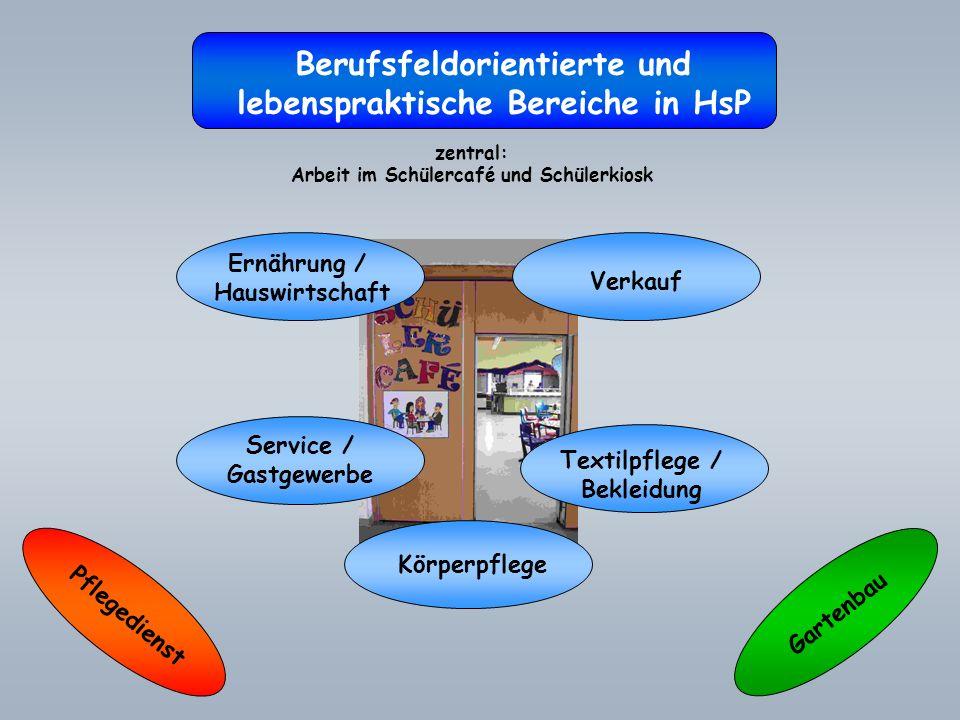 Berufsfeldorientierte und lebenspraktische Bereiche in HsP