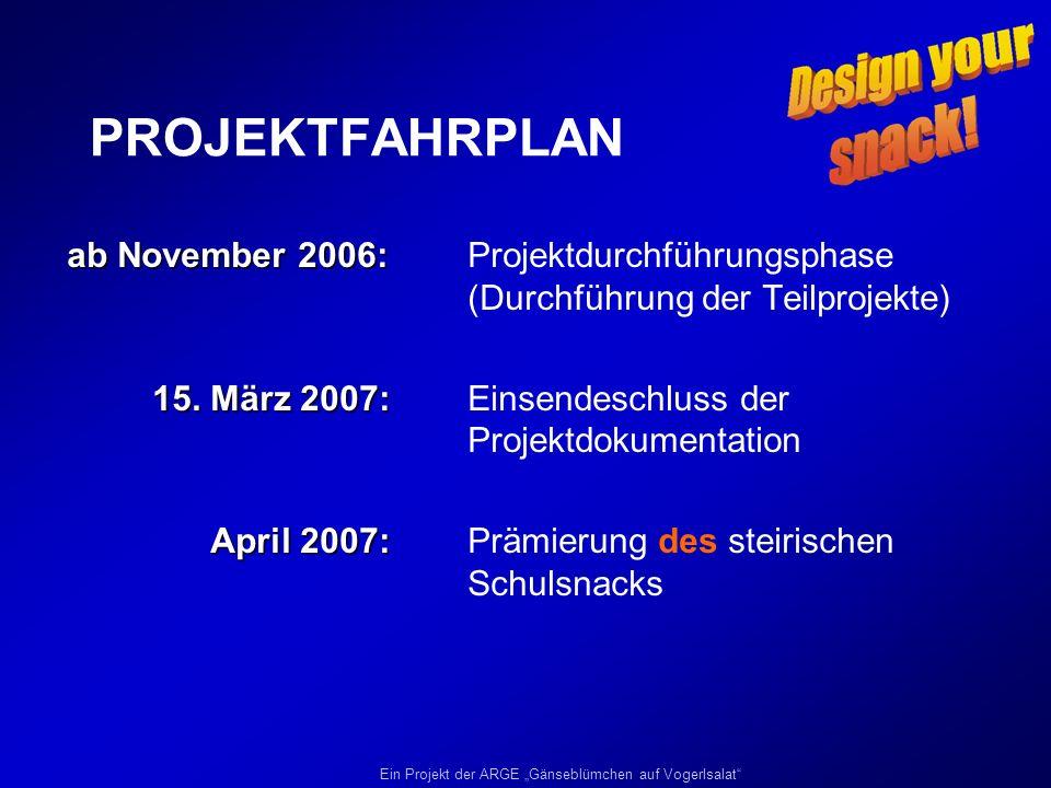 PROJEKTFAHRPLAN ab November 2006: Projektdurchführungsphase (Durchführung der Teilprojekte)