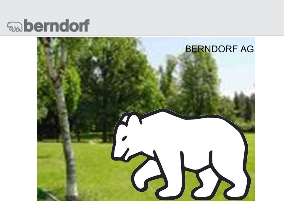 BERNDORF AG